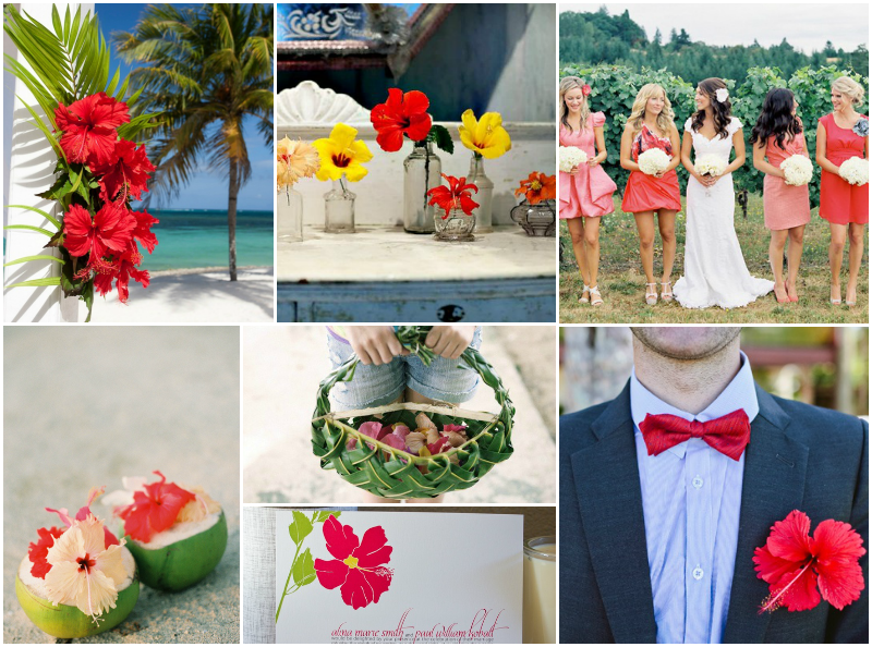 hibiscus-wedding-red
