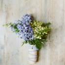 Colour Trends 2014: Placid Blue and Violet Tulip
