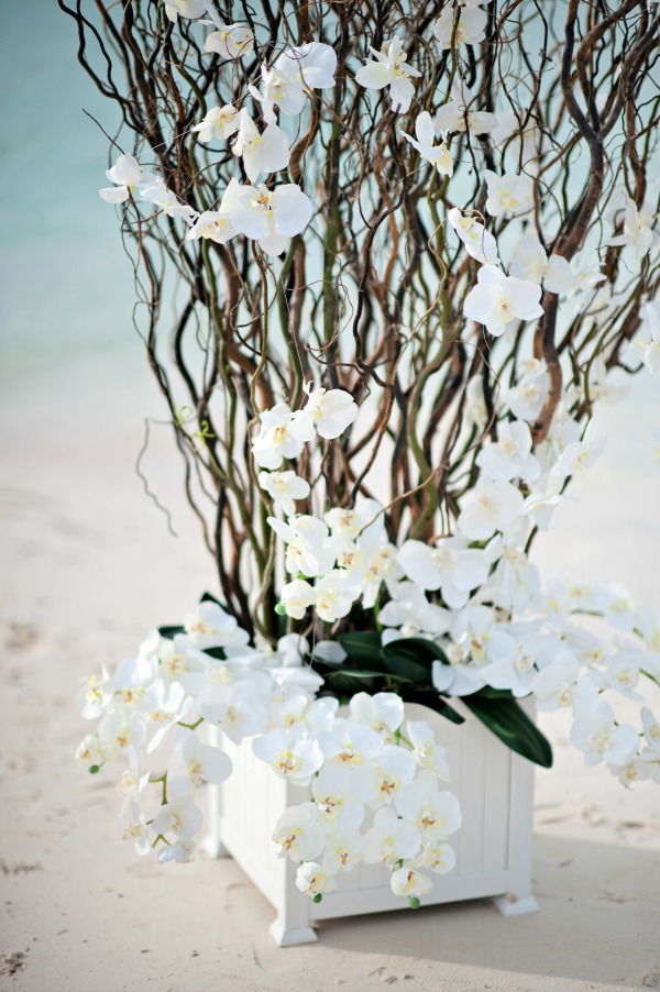 Intimate Bahamas Tropical Beach Wedding By Kristen Weaver Photography