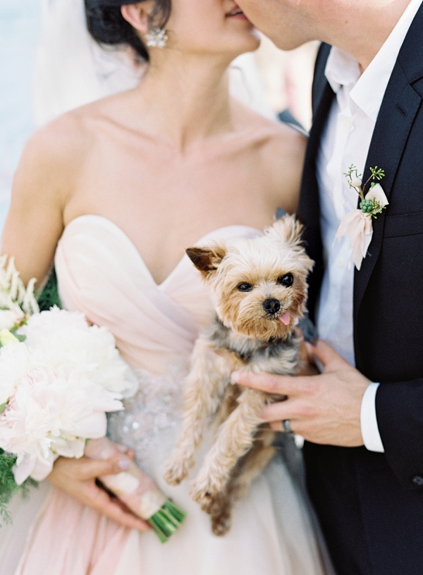 Bride and Groom with Adorable Pet Dog | Dominican Republic Resort Wedding By Carrie King Photographer