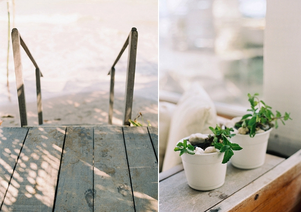 A Farwell Picnic In Brazil By Cassidy Carson Photography