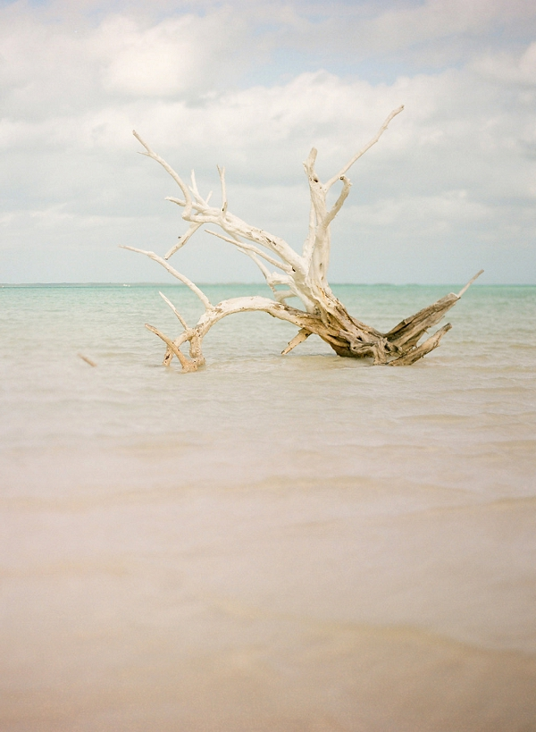 Harbour Island, Bahamas Engagement Session from Julie Cate Photography