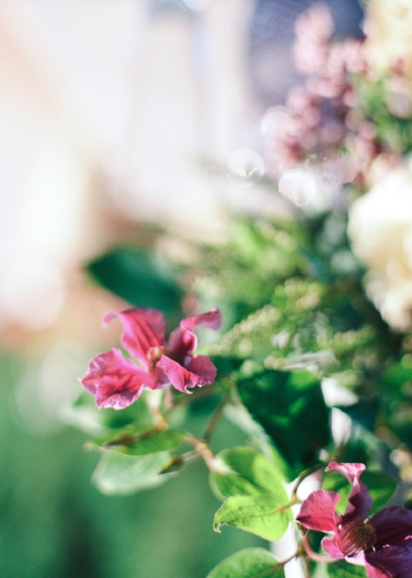 Garden Bridal Shower Inspiration By Yulia Tarasova Photography