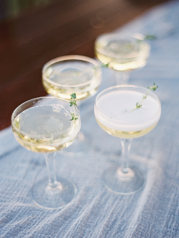 Wedding Champagne | Romantic Vineyard Elopement Inspiration by Gaby J Photography