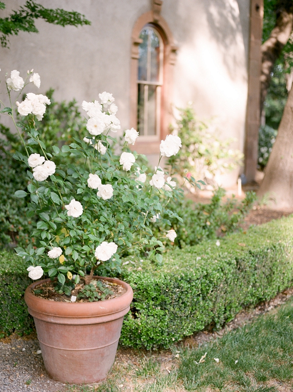 Winery in Napa Valley | Summer Garden Wedding Inspiration from Kate Anfinson Photography and Gigi Mallatt Events