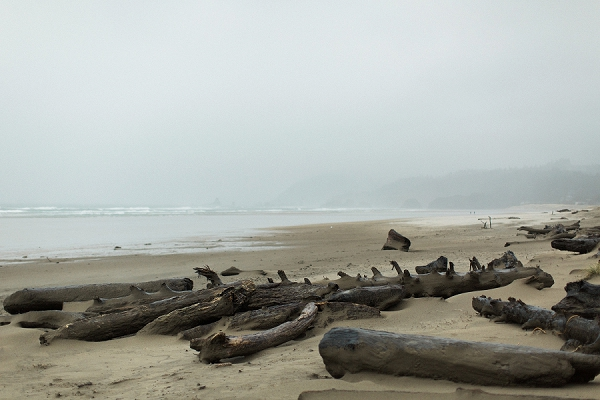 Beach Setting | Rainy Day Elopement Inspiration by Tracy Enoch Photography and Query Events