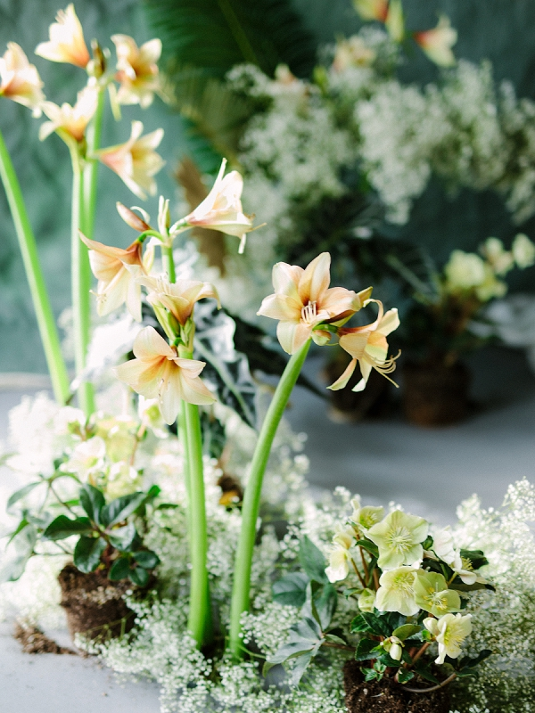 Greenhouse Venue | Ethereal Greenhouse Wedding Inspiration from Brushfire Photography